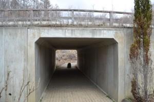 見晴の丘トンネル